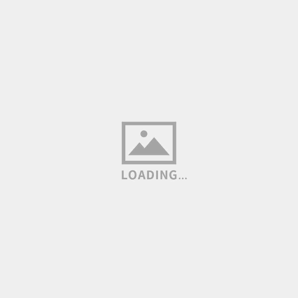 logo设计-OSTE(调味品品牌)